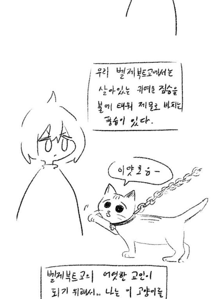 (ㅇㅎ)귀여운 고양이를 산제물로 바치려는 악마숭배자 소년 만화  No.1